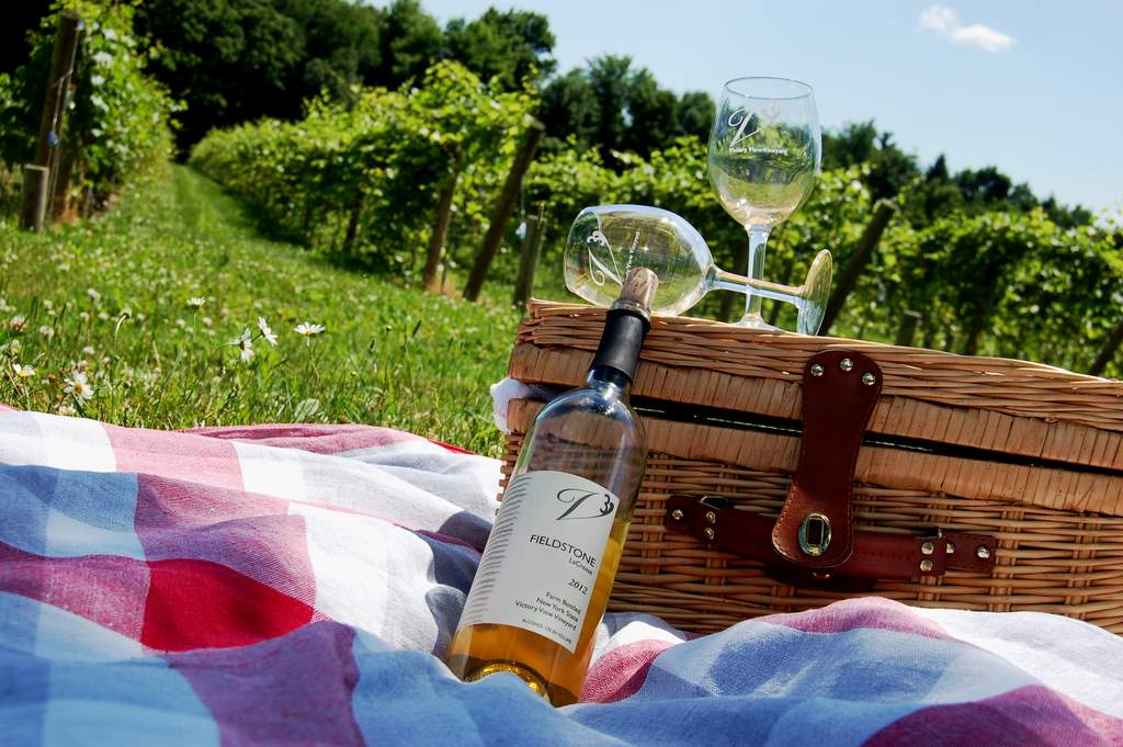 Enjoy a Victory View Vineyard wine and cheese picnic on The Cheese Tour.