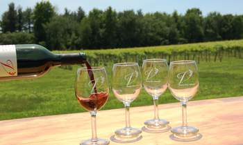 Marquette wine tasting at Victory View Vineyard