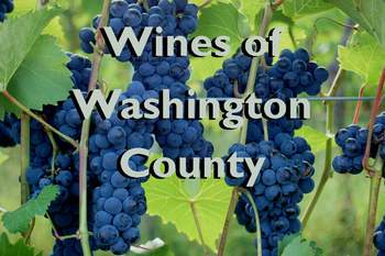 Victory View Vineyard Wines of Washington Co