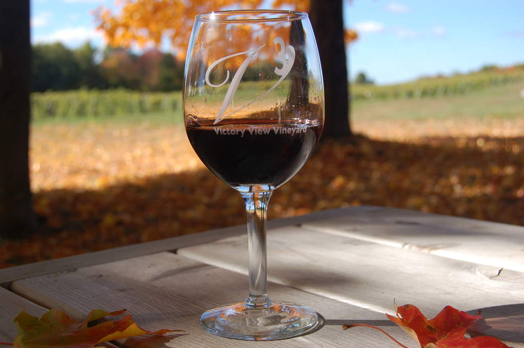 A glass of Lafayette maréchal foch wine on a picnic table overlooking vineyard in Autumn.