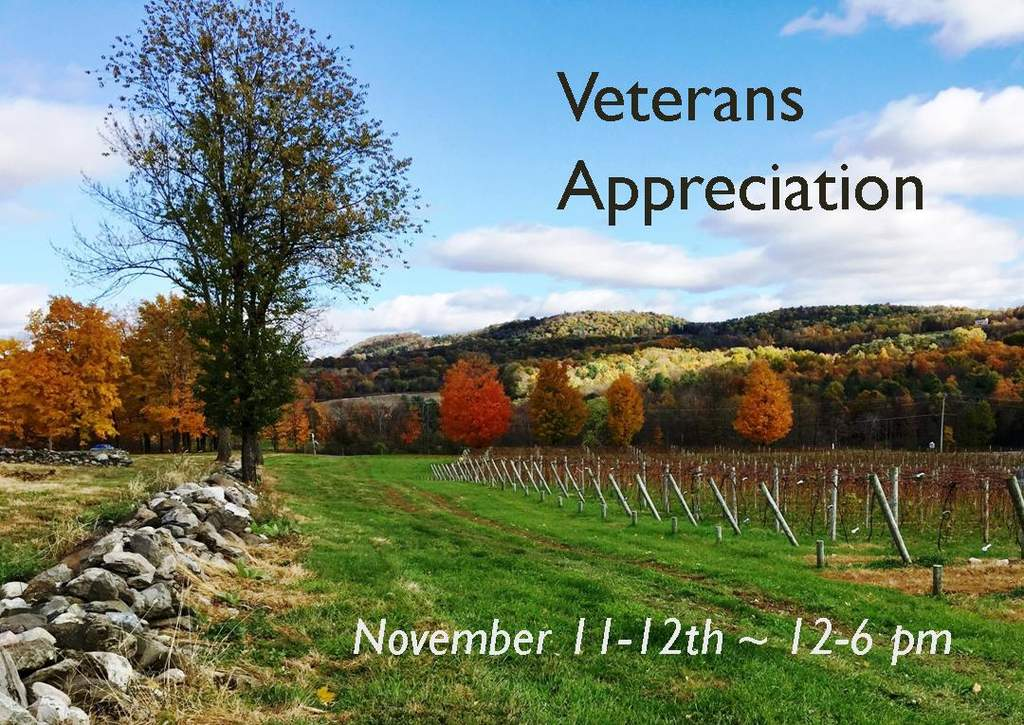 Veterans Day Appreciation at winery. Photo shows Autumn view of vineyard.